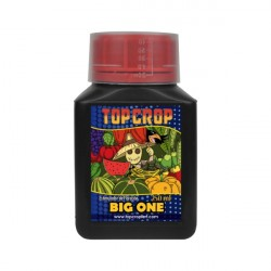 Big One De Top Crop 250ml