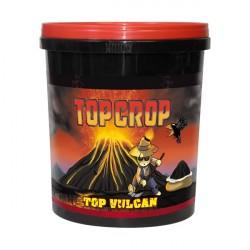 Top Vulcan 1lt Polvo De...